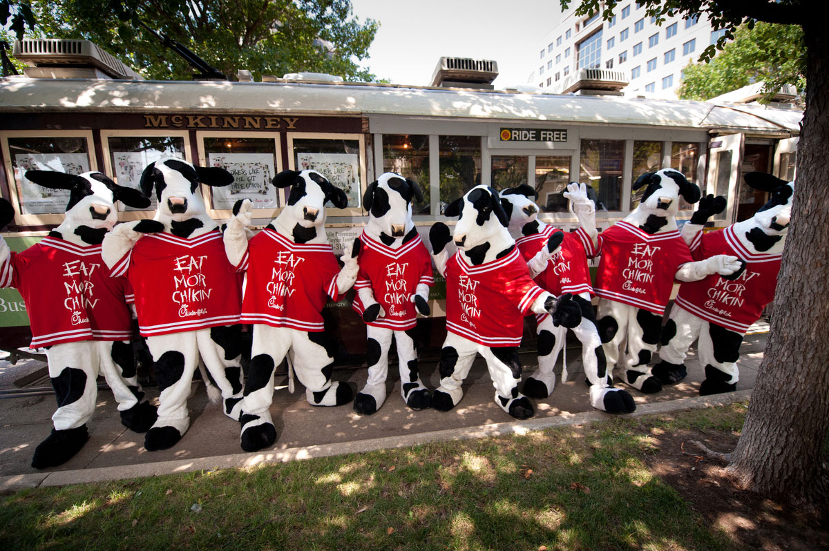 picture regarding Chick Fil a Printable Cow Costume named Chick-fil-A in the direction of supply totally free food stuff in direction of cow-clad consumers Chick