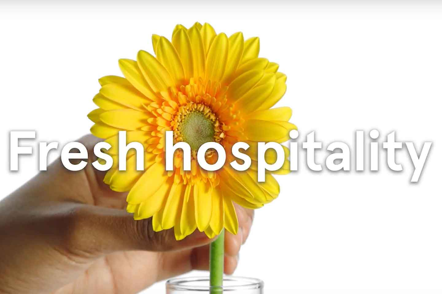 Fresh hospitality - image of a yellow flower