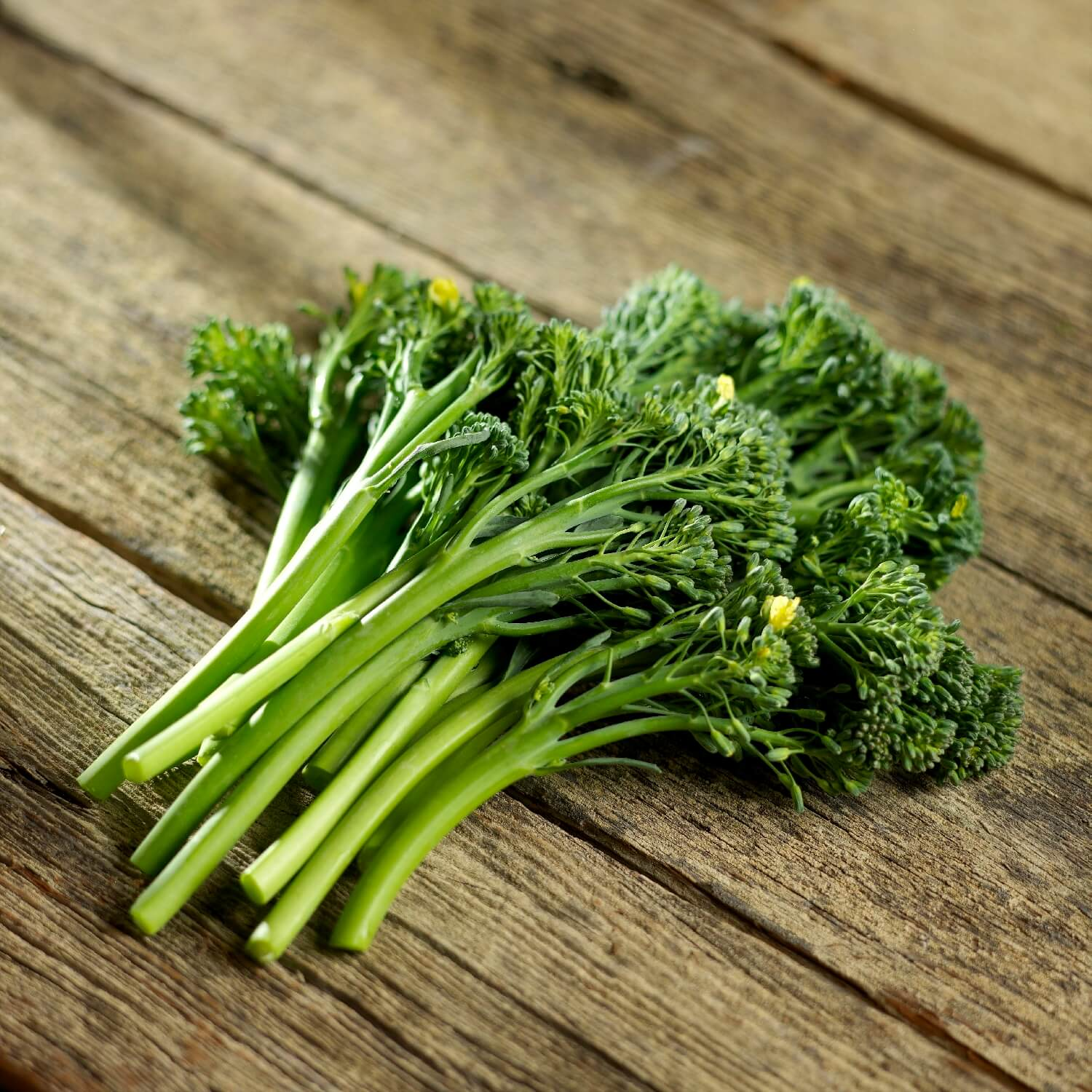 Broccolini Product Shot