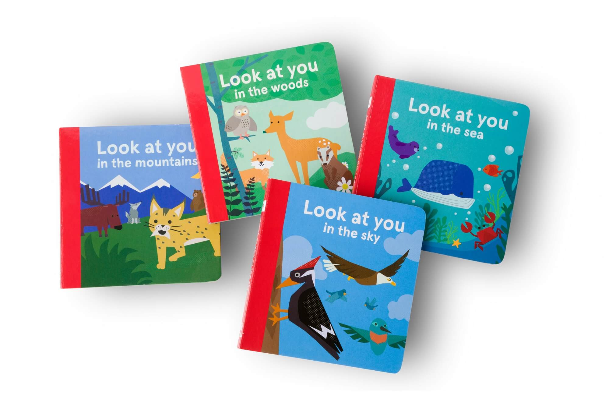 The Look at You book collection, including Look at You in the Sea, Look at You in the Woods, Look at You in the Sky, and Look at You in the Mountains