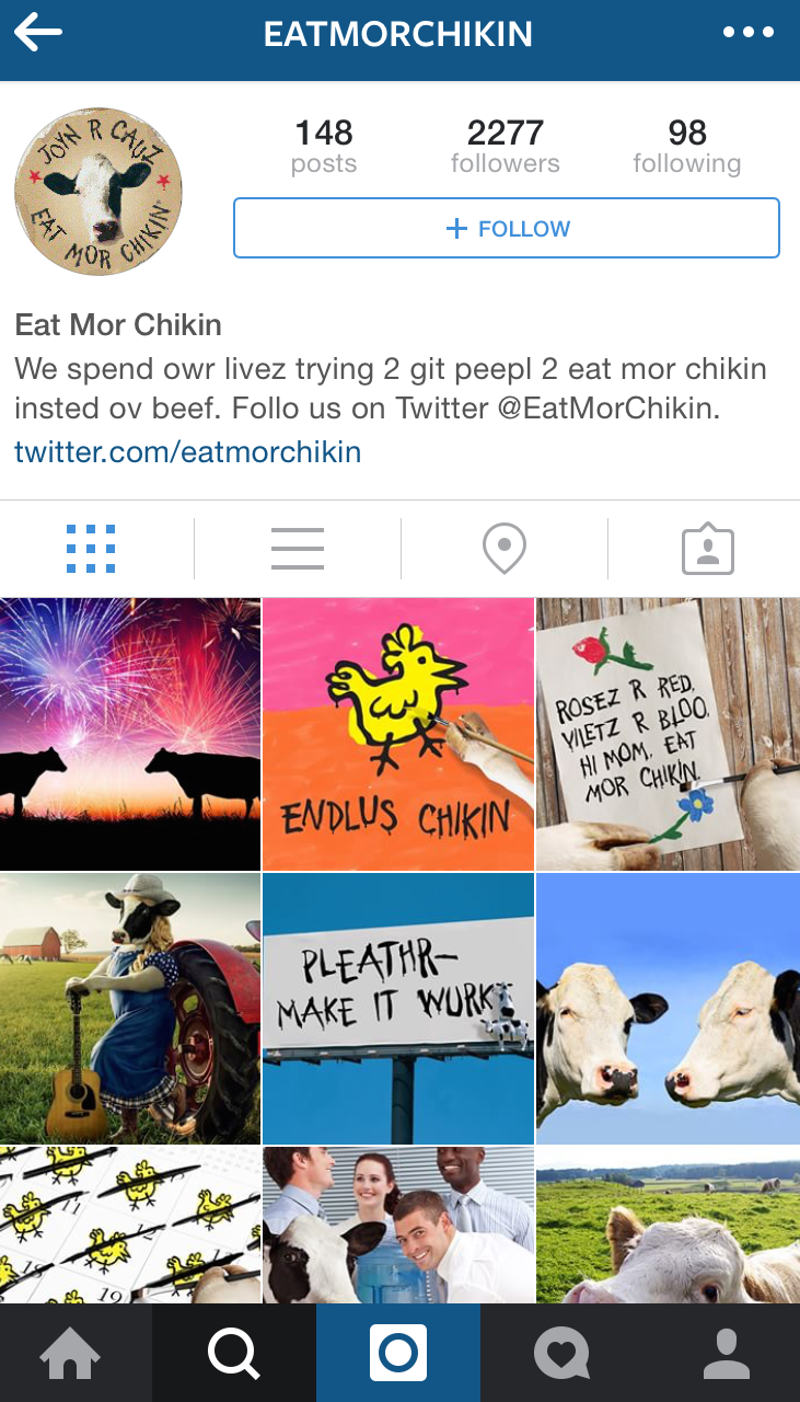 2013 – Cows join Instagram