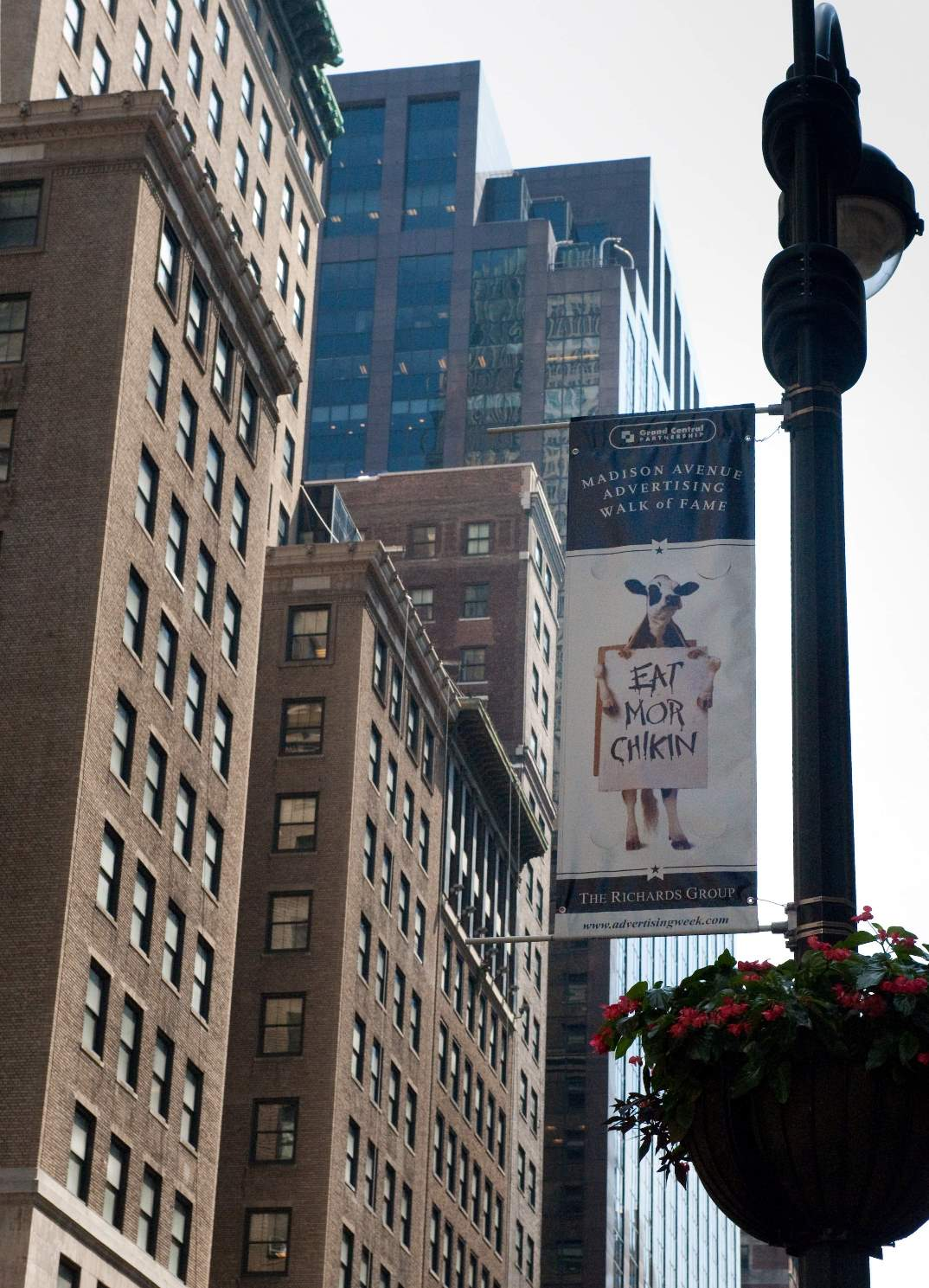2007 – Cows Inducted into Madison Avenue's Advertising Walk of Fame