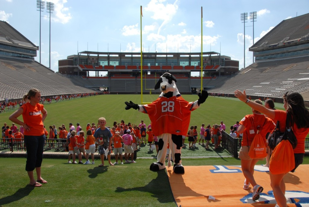 Clemson cow at the stadium