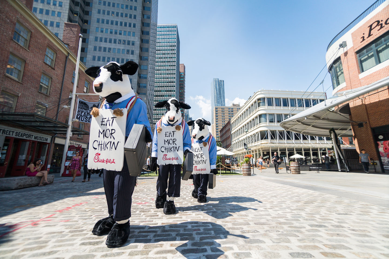 Lower Moo Hattan Cows Of Wall Street Chick Fil A